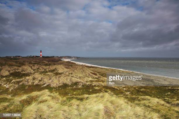 in the dunes of sylt - coastline at the north sea - nordsee stock-fotos und bilder