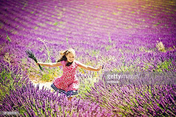 In the field of lavender