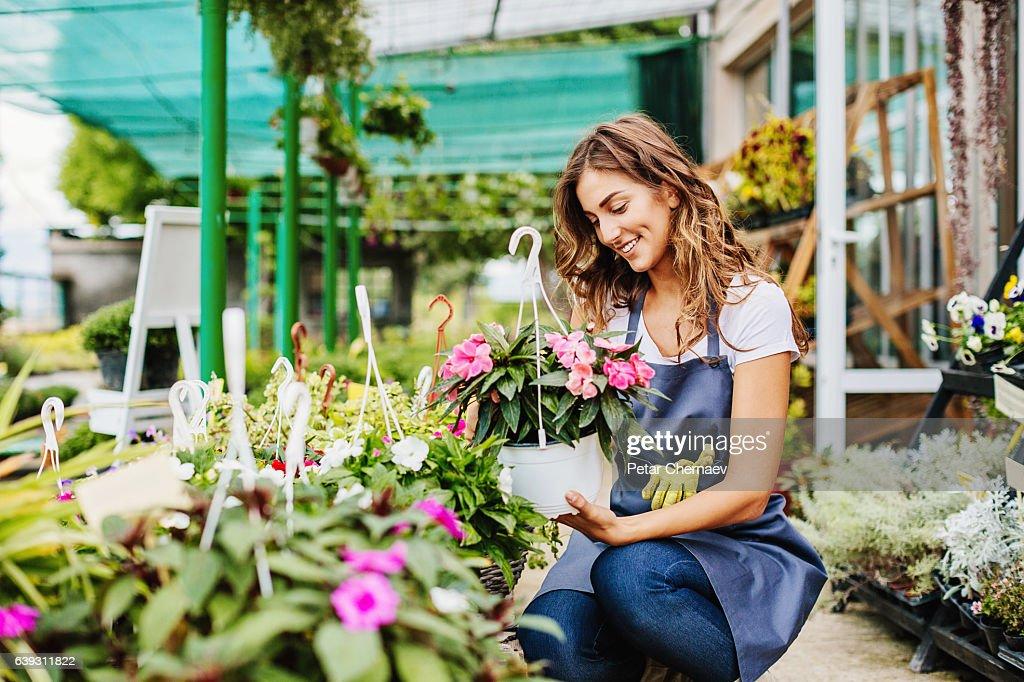 In the garden center : Stock Photo