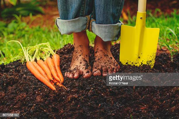 in the garden - dirty feet stock pictures, royalty-free photos & images