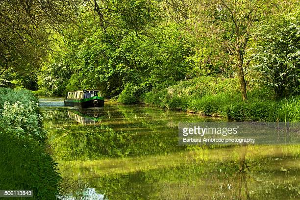 in the green - northamptonshire stock photos and pictures