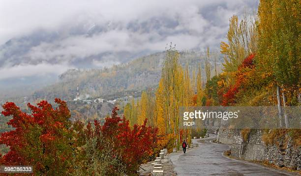in the heart of nature - gilgit baltistan stock photos and pictures