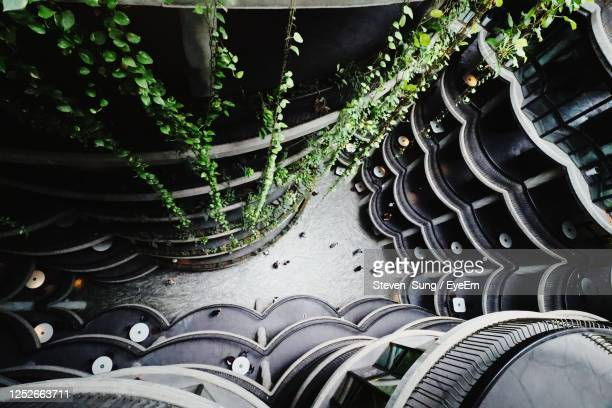 in the hive - singapore stock pictures, royalty-free photos & images