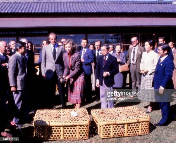 In the Imperial Reserve 'Shinama', the Spanish Kings Juan Carlos and Sofia and the Crown Princes Akihito and Michiko loose some pigeons, 29th October...