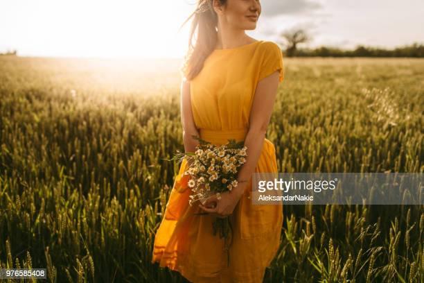 in der meadow - gelbes kleid stock-fotos und bilder
