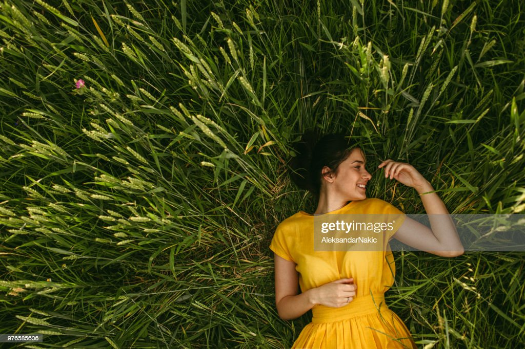 In the meadow : Foto stock