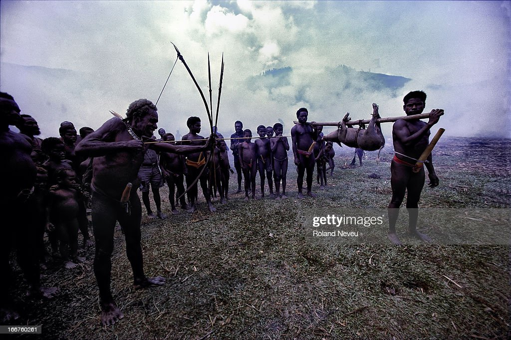 titan gel papua irian jaya pria lagianget live agen resmi