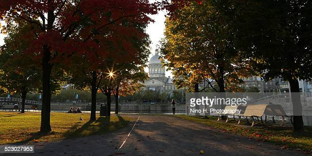 in the park, old montreal - vieux montréal stock pictures, royalty-free photos & images