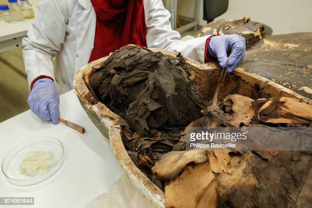In the restoration laboratory of the GEM mummies in Cairo conservationist Shiren Helmy cleans the sarcophagus of a mummy then after having moved the...