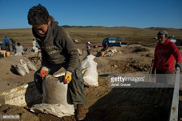 """In the Sharyngol district of Mongolia, a teenage """"ninja"""" loads up a truck with the soil that was dug up from a 10 feet deep hole where the workers..."""