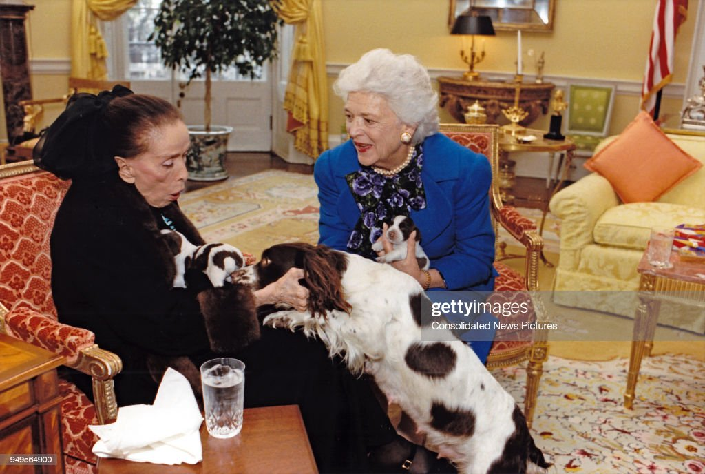 In the White House, American dancer and choreographer Martha Graham (1894 - 1991) (left) and First Lady Barbara Bush (1925 - 2018) play with the Bush's pet dog Millie (1985 - 1997) and her puppies, Washington DC, March 30, 1989.