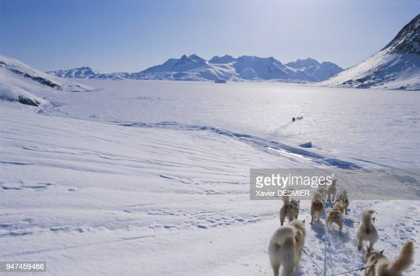 In the winter arriving at Ammassalik Fjord near the abandoned village of Qernertivartivit Seven years after PaulEmile Victor's time here the...