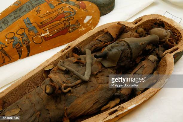 In the wood preservation laboratory one of the restorers cleans a small sarcophagus and its mummy