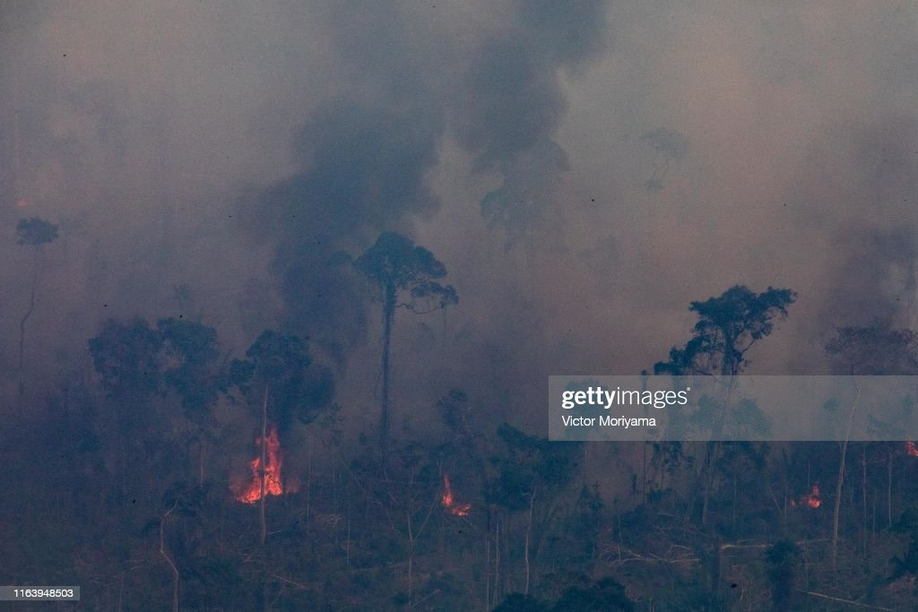 Record Number Of Fires Torch Brazil's Amazon Forest : News Photo