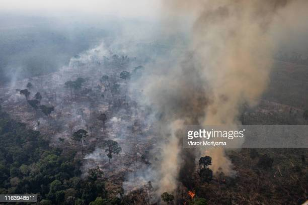 In this aerial image, A fire burns in a section of the Amazon rain forest on August 25, 2019 in the Candeias do Jamari region near Porto Velho,...