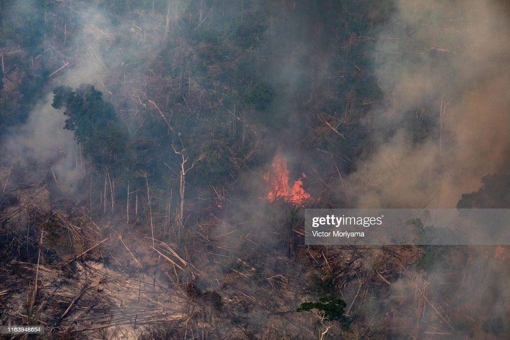 Record Number Of Fires Torch Brazil's Amazon Forest : Foto jornalística