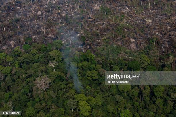 In this aerial image, a section of the Amazon rain forest that has been decimated by wildfires is seen on August 25, 2019 in the Candeias do Jamari...