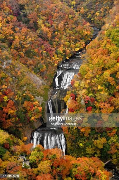 In this aerial image, autumn colours are seen around Fukuroda Falls on November 6, 2017 in Daigo, Ibaraki, Japan.