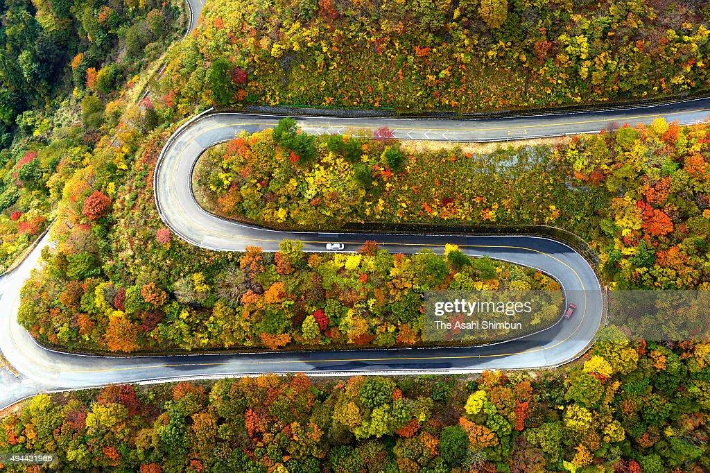 in this aerial image cars run mount ibukiyama driveway where trees