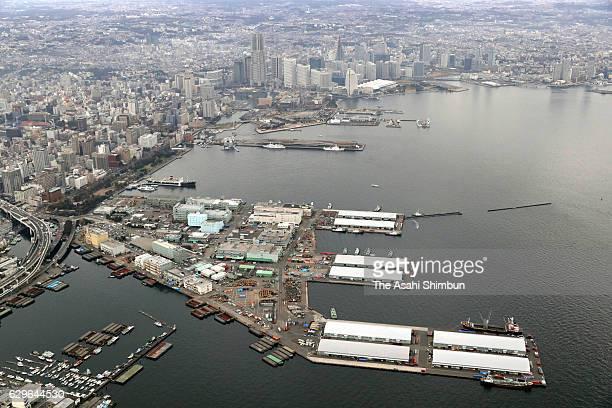 In this aerial image Yamashita Pier is seen on December 13 2016 in Yokohama Kanagawa Japan