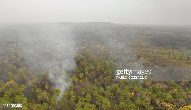 In this aerial view smokes rises from forest in Otuquis National Park in the Pantanal ecoregion of Bolivia southeast of the Amazon basin on August 26...