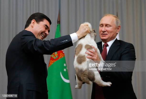 In this file photo taken on October 11, 2017 Turkmenistan's President Gurbanguly Berdimuhamedov presents a Turkmen shepherd dog, locally known as...