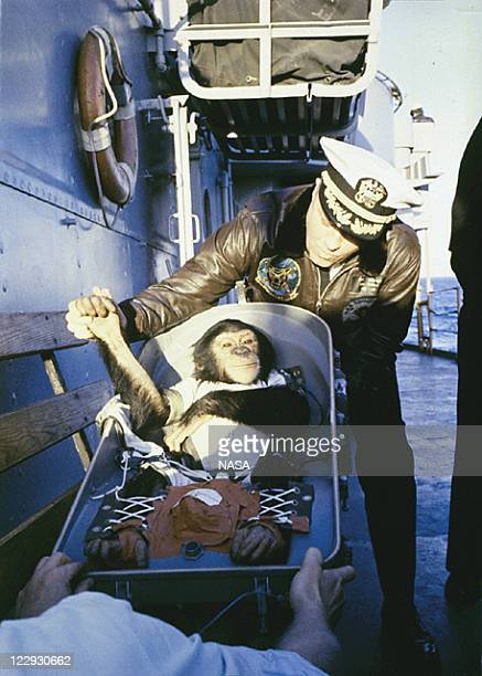 In this handout from NASA Ham a chimpanzee astronaut that flew aboard the MercuryRedstone 2 spacecraft is greeted Commander Ralph A Brackett on the...