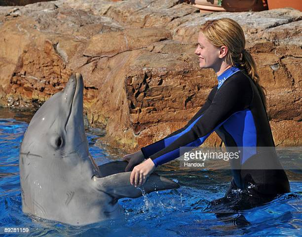 In this handout from SeaWorld San Diego 'True Blood' actor Anna Paquin swims with a bottlenose dolphin during a Dolphin Interaction Program at...
