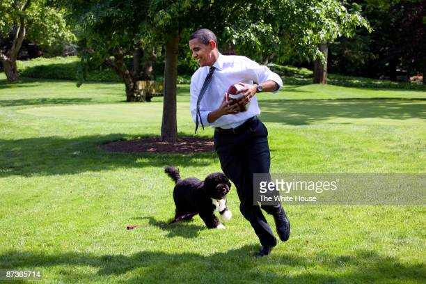 In this handout from the The White House, U.S. President Barack Obama plays football with the family dog Bo on the South Lawn of the White House May...