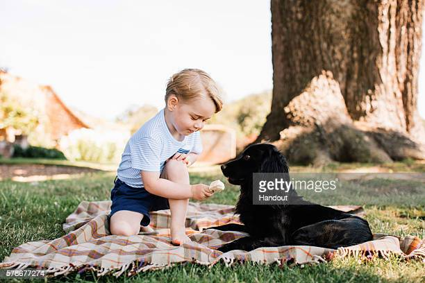 In this handout image of four released on July 22 2016 by the Duke and Duchess of Cambridge Prince Prince George of Cambridge feeds a cocker spaniel...
