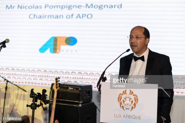 In this handout image provided by APO Group, Nicolas Pompigne-Mognard, Chairman APO Groupduring the Lux Afrique Nigerian Independence Dinner at...