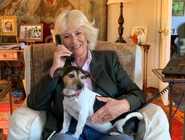 GBR: Duchess Of Cornwall Silverline Charity Phonecall