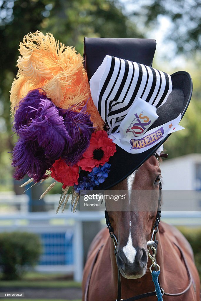 Filly Fascinator - Ladies Day Hat for a Horse : News Photo