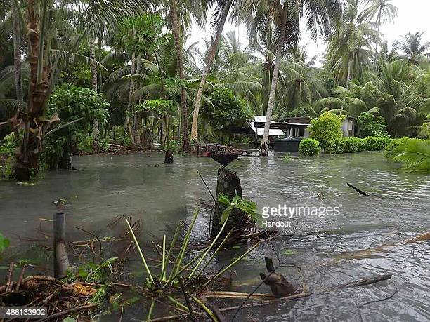 In this handout image provided by Plan International Australia a rooster sits atop a tree stump as flood waters move inland March 13 2015 on the...