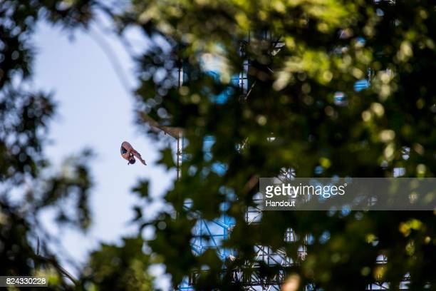 In this handout image provided by Red Bull Anna Bader of Germany dives from the 20 metre platform during the final rounds of women`s High Diving at...