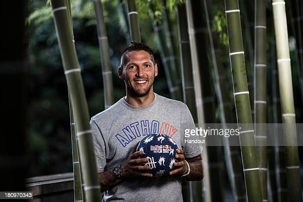 In this handout image provided by Red Bull, Former Italian national football player, Marco Materazzi, poses for a portrait at Zojoji Temple before...