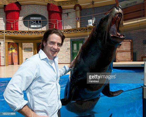 In this handout image provided by SeaWorld San Diego actor Dermot Mulroney hams it up with Clyde the Sea Lion during a visit to SeaWorld San Diego on...