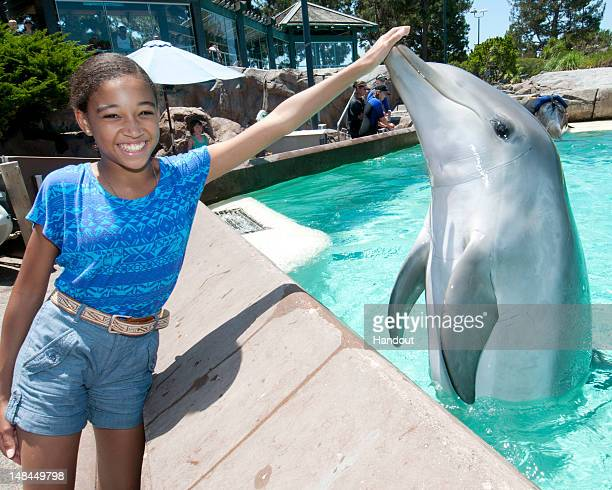 In this handout image provided by SeaWorld San Diego actress Amandla Stenberg makes a new friend in Avalon a bottlenose dolphin at SeaWorld San...