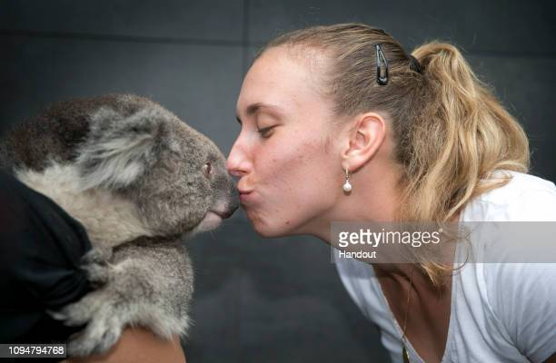 In this handout image provided by Tennis Australia, Elise Mertens of Belgium kisses a koala during day three of the 2019 Australian Open on January...