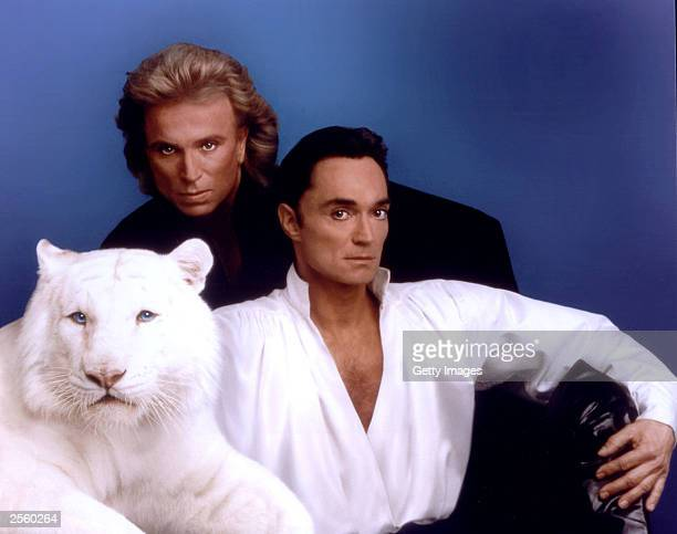 In this handout image provided by the Mirage Resort Siegfried Roy pose with a white tiger in this undated photo Horn 59yearsold was mauled and...