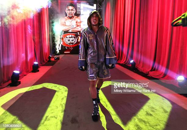 In this handout image provided by Top Rank, Teofimo Lopez Jr walks to the ring before the Lightweight World Title bout against Vasiliy Lomachenko at...