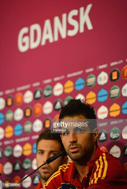 In this handout image provided by UEFA Cesc Fabregas of Spain talks to the media during a UEFA EURO 2012 press conference at the Municipal Stadium on...