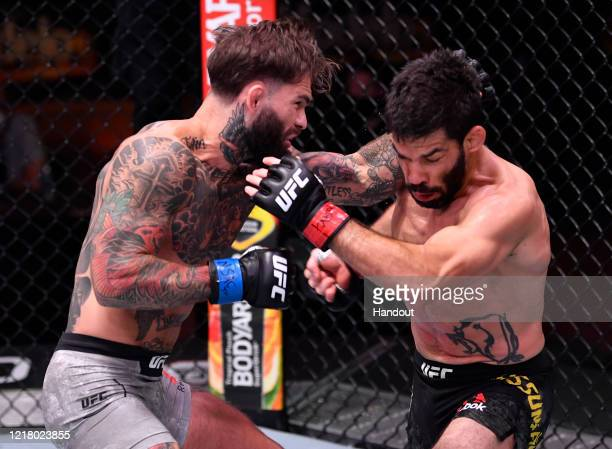 In this handout image provided by UFC Cody Garbrandt punches Raphael Assuncao of Brazil in their bantamweight bout during the UFC 250 event at UFC...