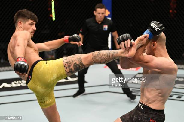 In this handout image provided by UFC, Joel Alvarez of Spain kicks Alexander Yakovlev of Russia in their lightweight bout during the UFC 254 event...