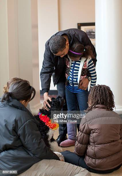 In this handout image released by the White House on April 12 US President Barack Obama pets the family's new dog Bo a sixmonth old Portuguese water...