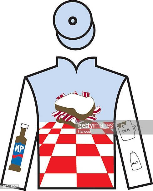 In this handout image Richard Bacon's jockey silk design is seen ahead of an auction of jockey silks designed by celebrities from the worlds of sport...