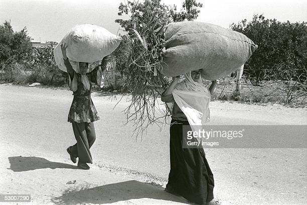 In this handout photo from the GPO Palestinian refugees girls carry home sacks of kindling almost ten years after the 1967 SixDay War May 10 in Rafah...