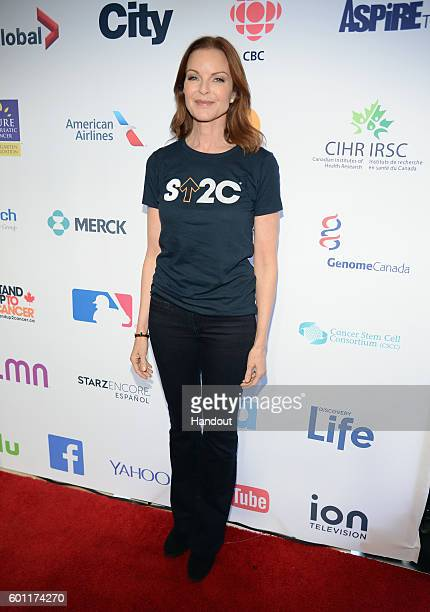 In this handout photo provided by American Broadcasting Companies Inc actress Marcia Cross attends Stand Up To Cancer a program of the Entertainment...