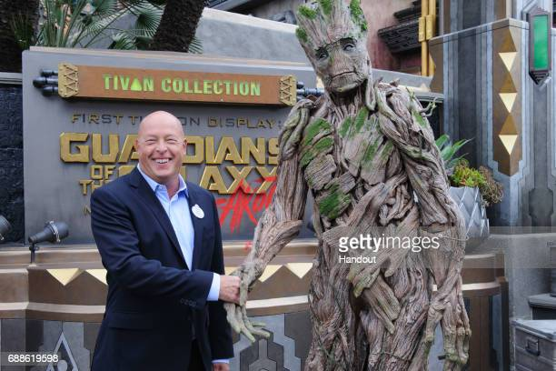 In this handout photo provided by Disney Resorts Chairman of Walt Disney Parks and Resorts Bob Chapek attends the grand opening of Guardians of The...