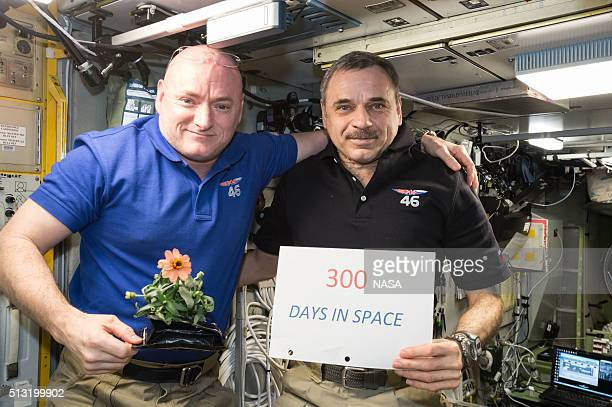 In this handout photo provided by NASA oneyear mission crew members Scott Kelly of NASA and Mikhail Kornienko of Roscosmos celebrated their 300th...